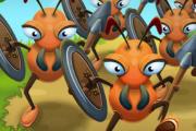 Ants Warrior