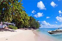Luxury Beach Escape