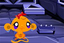 Monkey Happy Stage 294