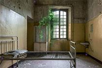 Noisy Asylum